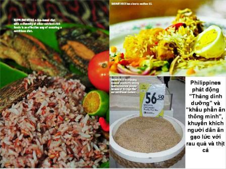 Năm lúa gạo và dinh dưỡng ở Philippine