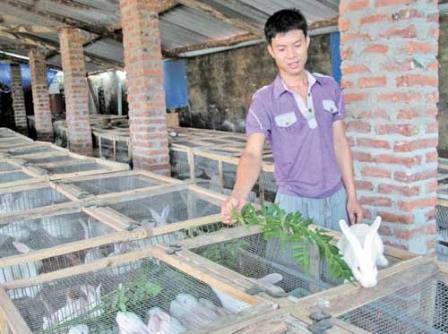Bắc Giang: Nuôi thỏ thoát nghèo