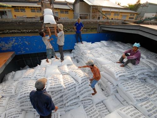 Thông tin sản xuất tiêu thụ gạo một số nước cuối tháng 8/2014