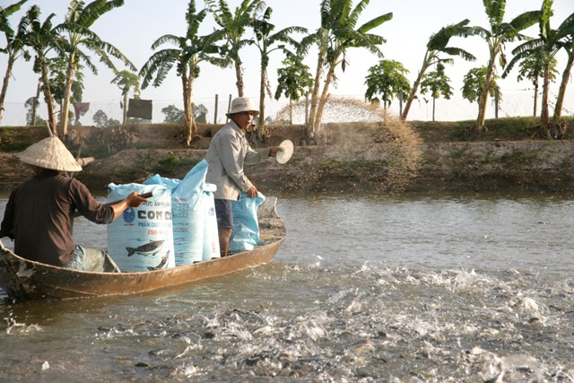9 tháng, sản lượng khai thác và nuôi trồng thủy sản đều tăng