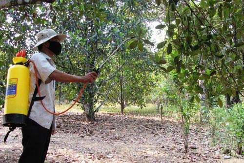 Công nghệ cao bảo quản nông sản từ khi chưa thu hoạch
