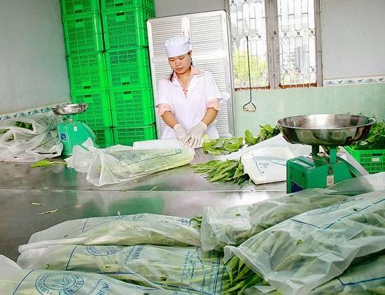 Chuỗi cung ứng giúp nâng cao giá trị nông sản