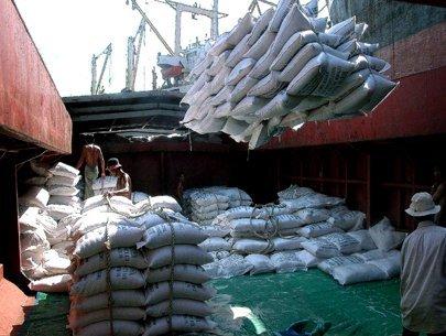 Thông tin sản xuất tiêu thụ gạo một số nước giữa tháng 11/2014