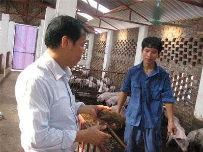 Anh Nguyễn Đại Thắng trao đổi về công nghệ làm sạch chuồng lợn bằng vi sinh vật