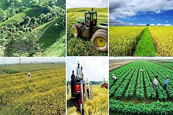 Chương trình mục tiêu Tái cơ cấu kinh tế nông nghiệp và phòng chống giảm nhẹ thiên tai