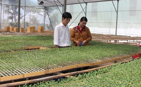 Sản xuất nông sản an toàn