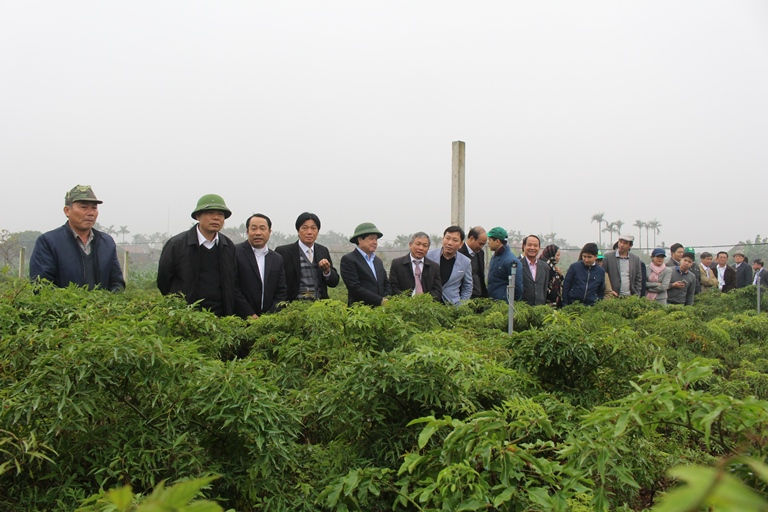 Xây dựng huyện Nông thôn mới kiểu: Cốt lõi là nâng cao đời sống cho người dân.
